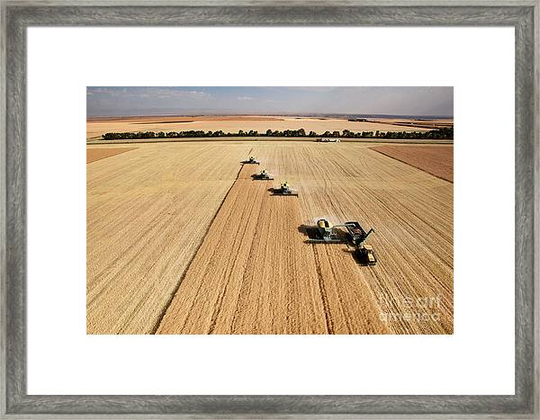 Four Harvesters Combing On A Prairie Framed Print