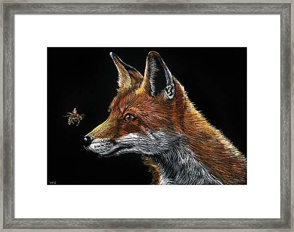 Fox And Hornet Framed Print