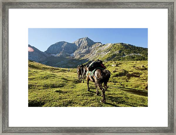 France, Hautes Pyrenees, The 1807-2007 Framed Print