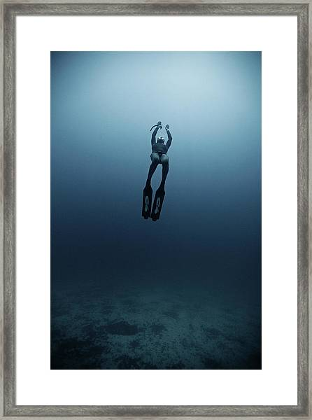 Freediving Framed Print