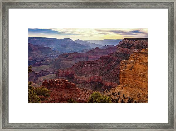 Fresh Light Framed Print