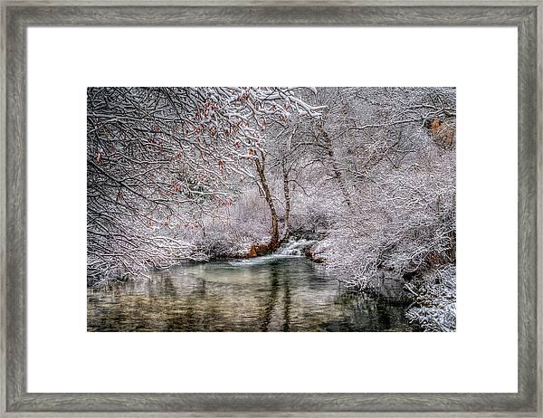 Frosty Pond Framed Print
