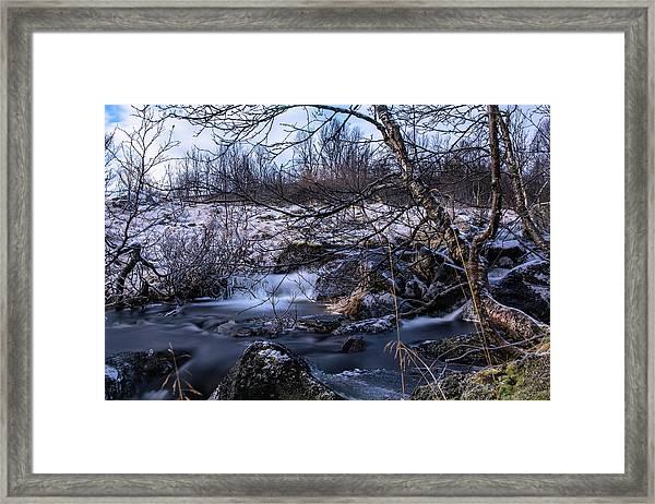 Frozen Tree In Winter River Framed Print