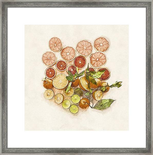 Fruits Mix Framed Print