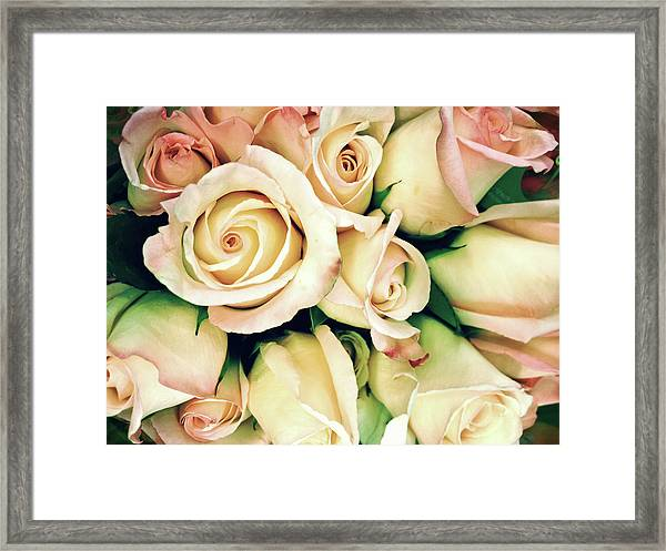 Full Frame Cross Processed Rose Bouquet Framed Print by Travelif