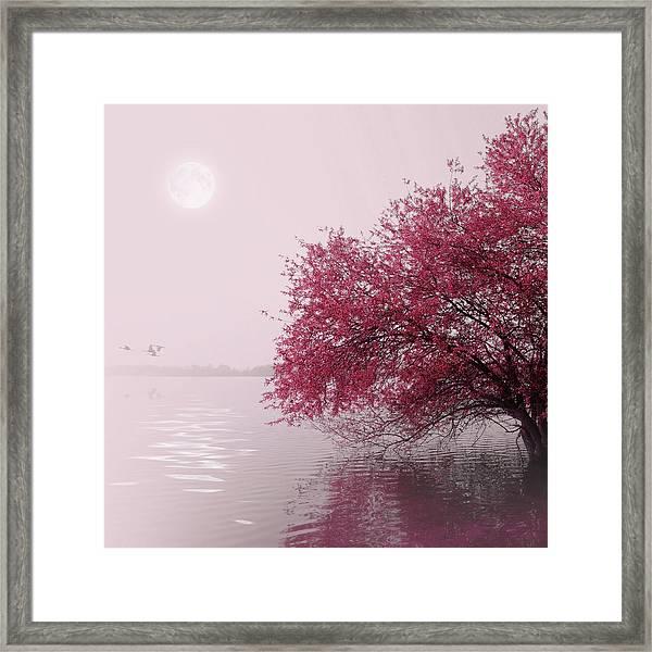 Full Moon On The Lake Framed Print