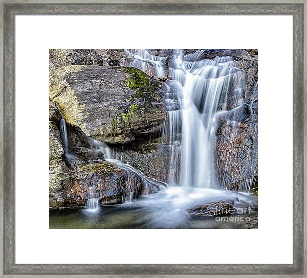 Full Of Treasures Framed Print