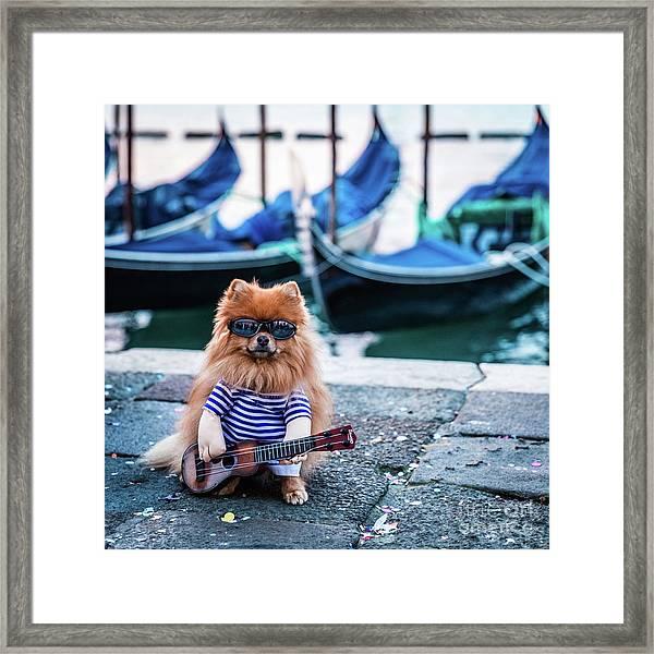 Funny Dog At The Carnival In Venice Framed Print