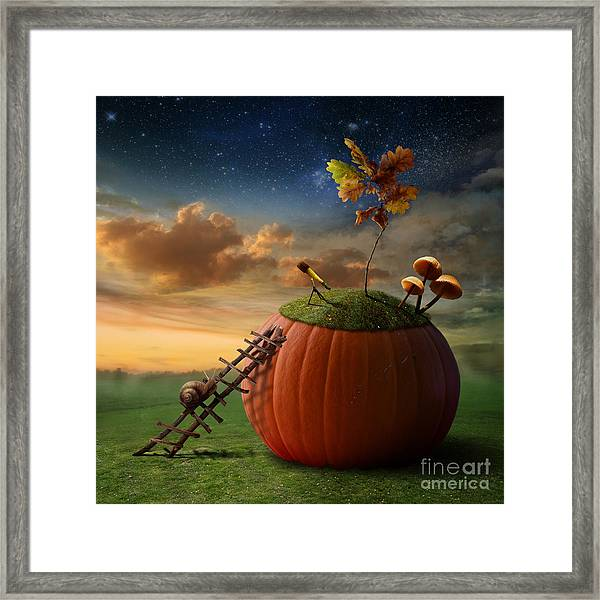 Funny Poster With Snail-astronomer And Framed Print