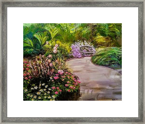 Path To The Garden Bench At Evergreen Arboretum Framed Print