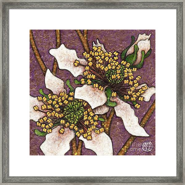 Framed Print featuring the painting Garden Room 44 by Amy E Fraser