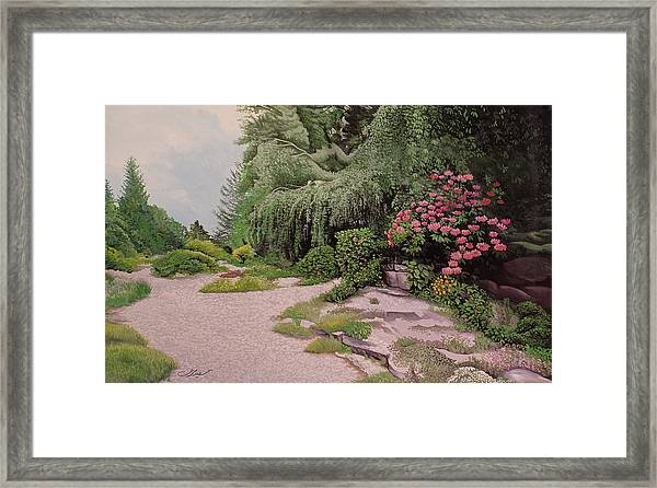 Framed Print featuring the painting Garden by Said Marie