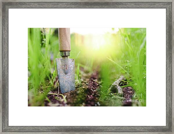 Gardening Shovel In An Orchard During The Gardener's Rest Framed Print