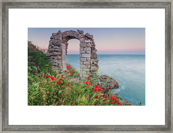 Gate In The Poppies Framed Print