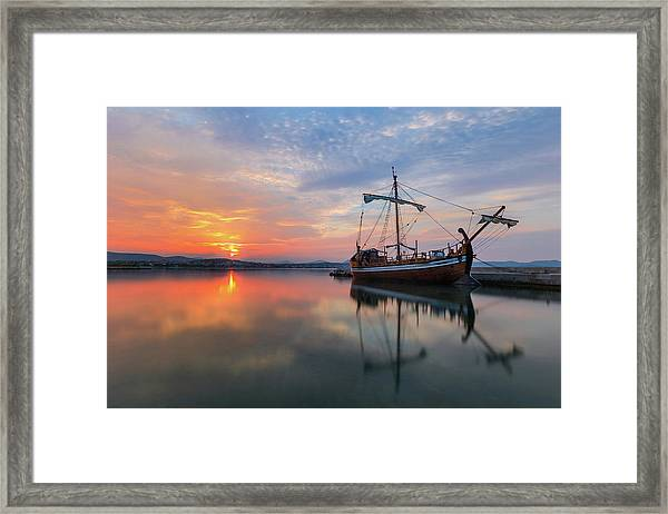 Gaul Framed Print