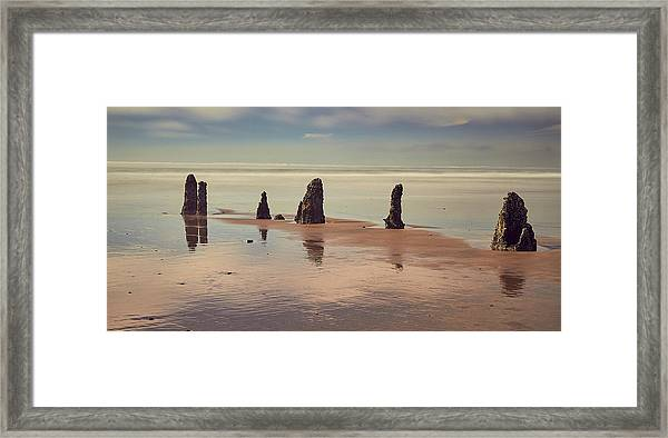 Framed Print featuring the photograph Ghost Forest by Whitney Goodey