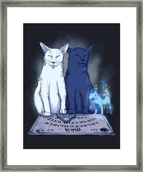 Ghost Kitten Framed Print