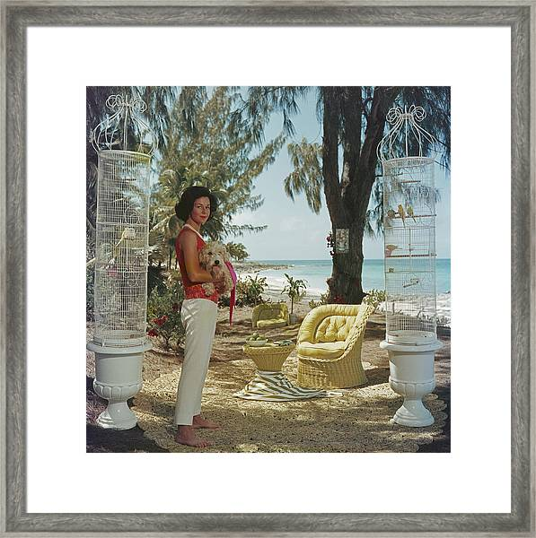 Gloria Schiff Framed Print
