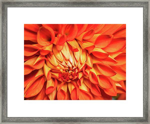 Glowing Framed Print