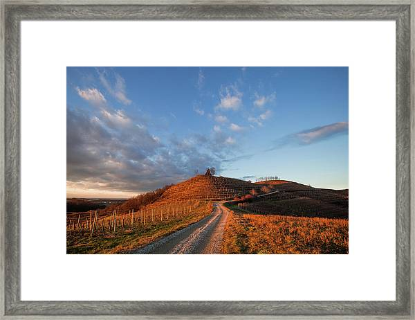 Golden Hill Framed Print