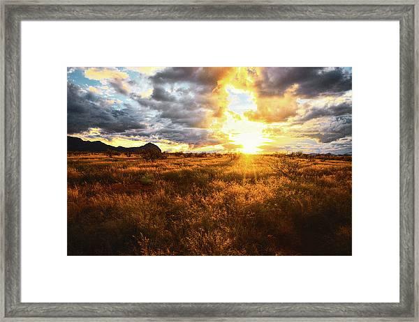 Golden Light Of Southern Arizona Framed Print
