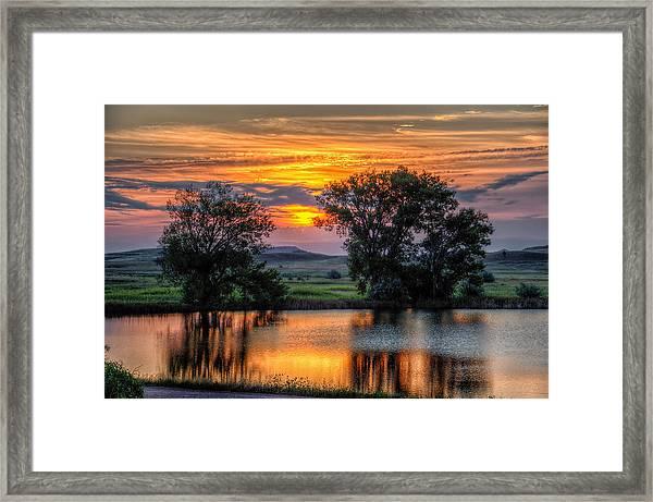 Golden Pond Framed Print