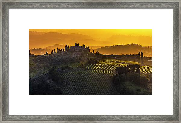 Golden Tuscany Framed Print
