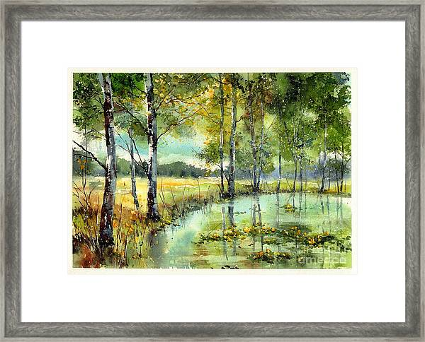 Gorgeous Water Lilies Bloom Framed Print