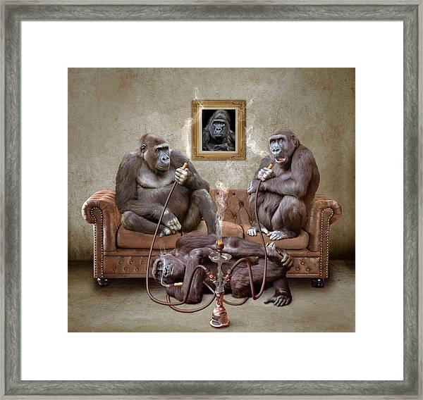 Gorilla Family Framed Print