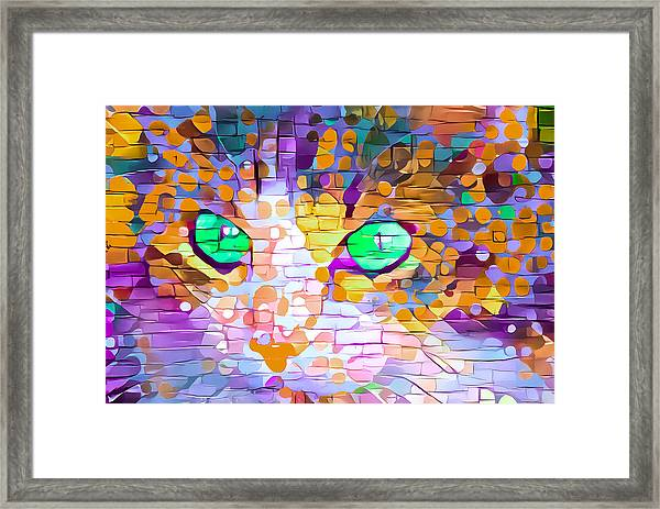 Green Eyed Cat Abstract Framed Print