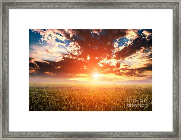 Green Field And Beautiful Sunset Framed Print