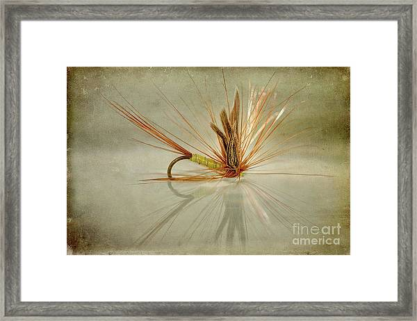 Greenwells Glory Dry Fly Framed Print