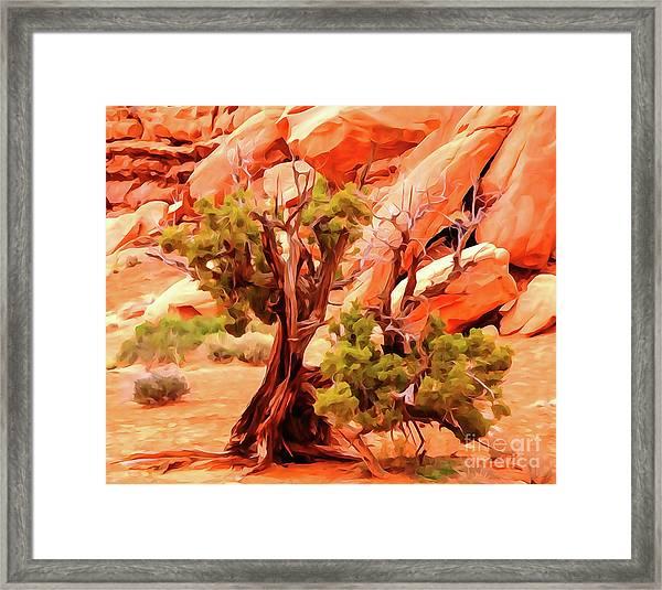 Greeter Pine At Park Avenue Framed Print by Bob Lentz