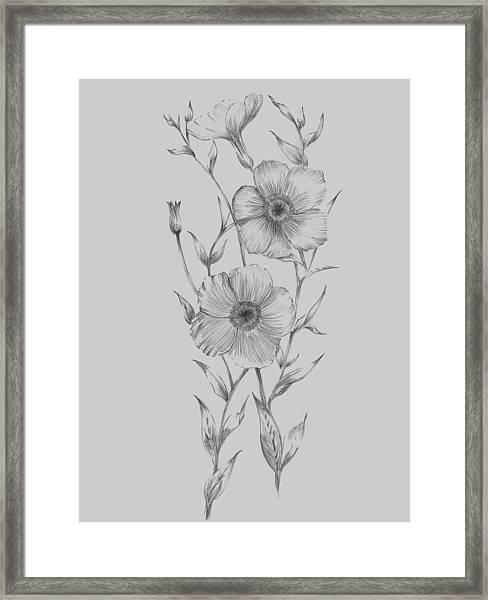 Grey Flower Sketch Illustration I Framed Print