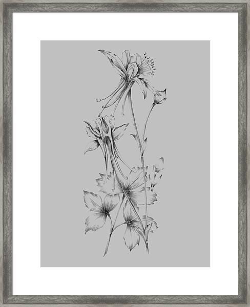Grey Flower Sketch Framed Print