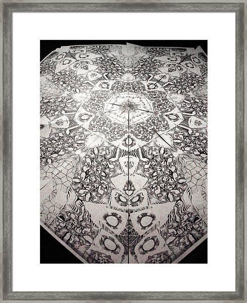 Grillo Framed Print