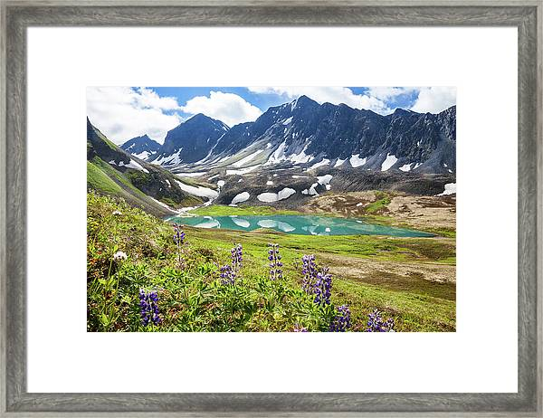 Grizzly Bear Lake Framed Print