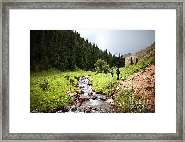 Group Of Backpackers Walking In Summer Framed Print