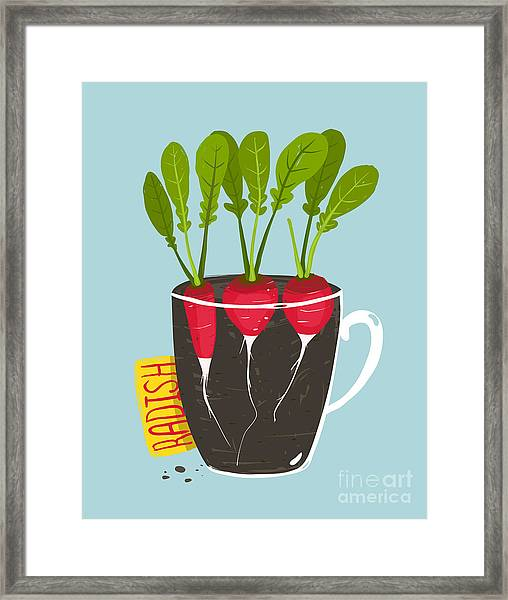 Growing Radish With Green Leafy Top In Framed Print