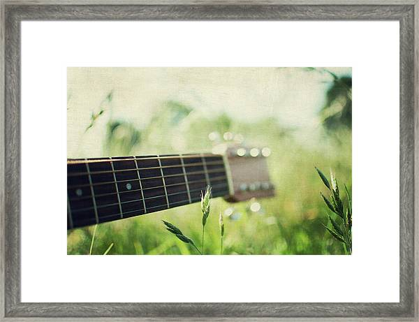 Guitar In Country Meadow Framed Print