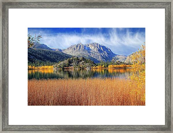 Gull Lake View From The Marsh Framed Print