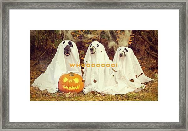 Halloween Hounds Framed Print