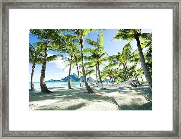 Hammock At Bora Bora, Tahiti Framed Print by Yusuke Okada/amanaimagesrf