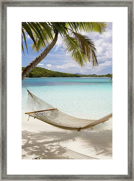 Hammock Hung On Palm Trees On A Framed Print