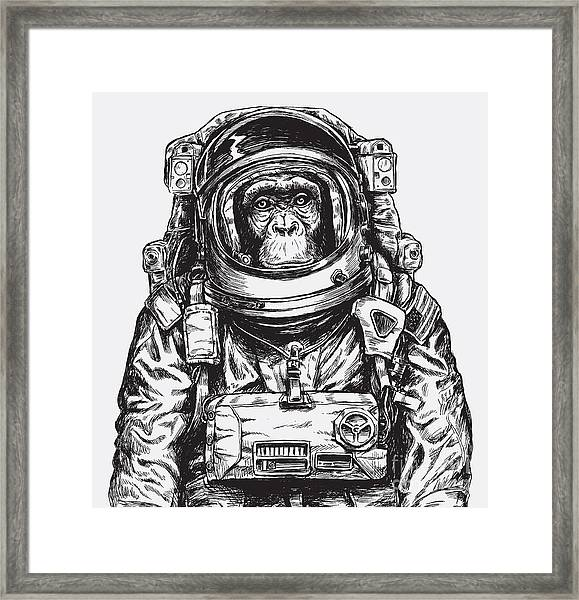 Hand Drawn Monkey Astronaut Vector Framed Print