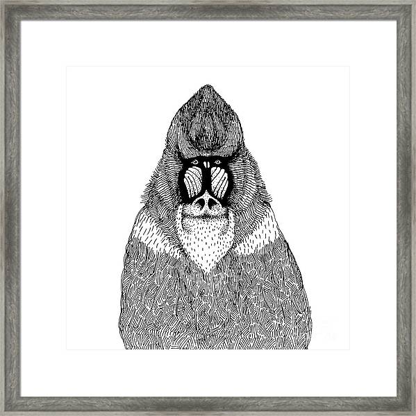 Hand Drawn Vector Illustration With An Framed Print
