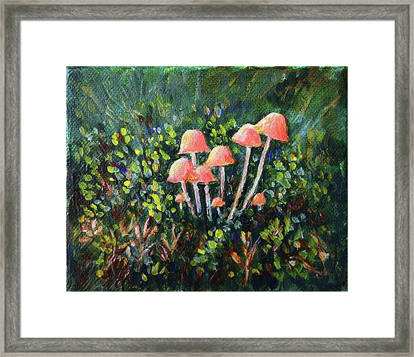 Happy Mushrooms Framed Print