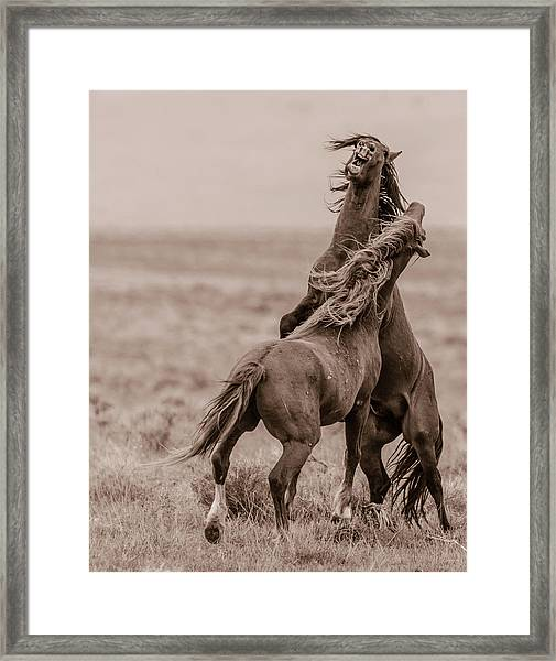 He Means It Framed Print