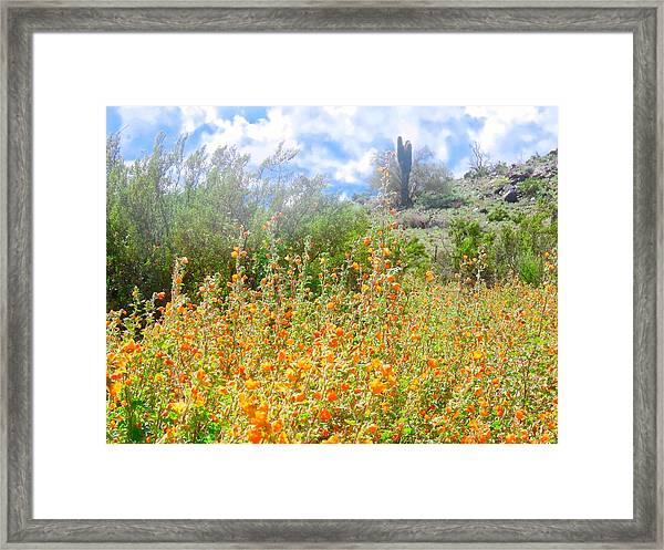 Heavenly Home In Arizona Framed Print