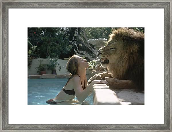Hedren & Neil The Lion Framed Print by Michael Rougier